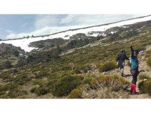 El Nevero es de fácil acceso desde Camping Sierra Madrid Monte Holiday